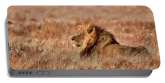 Black-maned Lion Of The Kalahari Waiting Portable Battery Charger