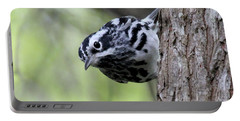 Black-n-white Warbler Portable Battery Charger