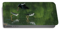 Black-necked Stilts 4301-080917-1cr Portable Battery Charger