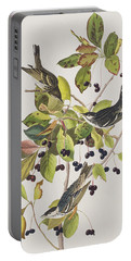 Black Poll Warbler Portable Battery Charger by John James Audubon