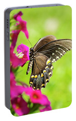 Portable Battery Charger featuring the photograph Black Swallowtail Butterfly by Christina Rollo