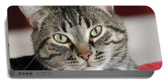 Black Tabby Portable Battery Charger