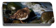 Black Turnstone Portable Battery Charger by Inge Riis McDonald