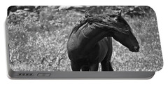 Black Wild Mustang Portable Battery Charger
