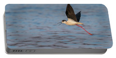 Portable Battery Charger featuring the photograph Black-winged Stilt - Himantopus Himantopus by Jivko Nakev