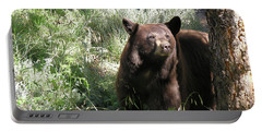 Blackbear3 Portable Battery Charger