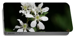Blackberry Blooms Portable Battery Charger by Cathy Harper