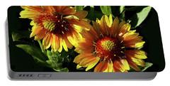 Blanket Flowers - Gaillardia Portable Battery Charger