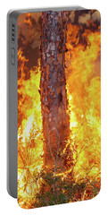 Blazing Pine Portable Battery Charger
