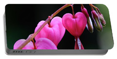 Bleeding Hearts 2 -  Portable Battery Charger