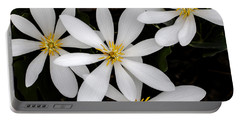 Sanguinaria Portable Battery Charger