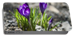 Blooming Crocus #1 Portable Battery Charger by Jeff Severson