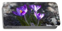 Blooming Crocus #3 Portable Battery Charger by Jeff Severson