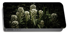 Portable Battery Charger featuring the photograph Blooming In The Shadows by Marco Oliveira