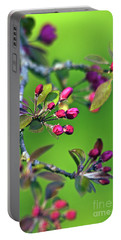 Portable Battery Charger featuring the photograph Blooming Spring Poetry by Silva Wischeropp