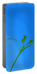 Blue And Green Portable Battery Charger