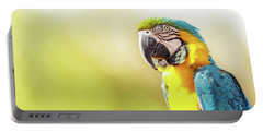Blue And Yellow Macaw With Copy Space Portable Battery Charger