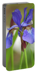 Portable Battery Charger featuring the photograph Blue Bearded Iris by Brenda Jacobs