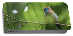 Blue Bird Chirping Portable Battery Charger