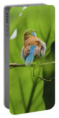Portable Battery Charger featuring the photograph Blue Bird Has An Itch by Raphael Lopez