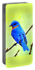 Blue Bird King Portable Battery Charger