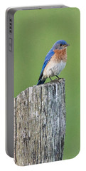 Blue Bird On Cedar Post Portable Battery Charger
