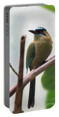 Blue-crowned Motmot Oil Portable Battery Charger