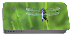 Blue Dasher Portable Battery Charger