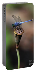 Blue Dragonfly Dancer Portable Battery Charger