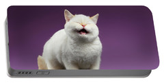 Blue Eyed British Kitten Meowing On Purple  Portable Battery Charger