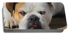 Blue-eyed English Bulldog - Painting Portable Battery Charger