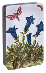 Blue Gentian  Trumpet Flower  Portable Battery Charger by Pierre-Joseph Buchoz