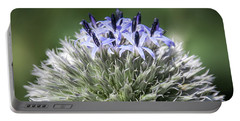 Blue Globe Thistle 3 - Portable Battery Charger