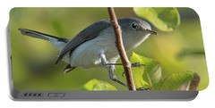 Blue Gray Gnatcatcher Portable Battery Charger
