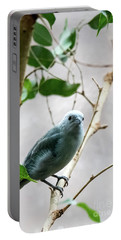 Blue-grey Tanager 2 Portable Battery Charger
