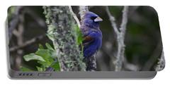 Blue Grosbeak In A Mangrove Portable Battery Charger