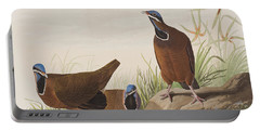 Blue Headed Pigeon Portable Battery Charger by John James Audubon