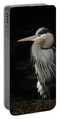 Portable Battery Charger featuring the photograph Blue Heron Gaze by Deborah Smith