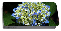 Blue Hydrangea Onstage 2620 H_2 Portable Battery Charger