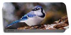 Blue Jay Day Portable Battery Charger