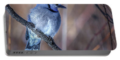 Blue Jay In Profile Portable Battery Charger