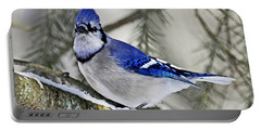 Blue Jay In Winter Portable Battery Charger by Rodney Campbell