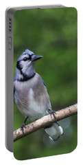 Blue Jay On Alert Portable Battery Charger