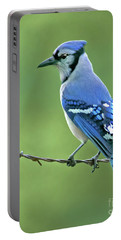 Blue Jay Photographs Portable Battery Chargers