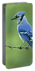 Blue Jay On The Fence Portable Battery Charger