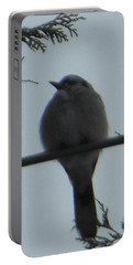 Blue Jay On Wire Portable Battery Charger