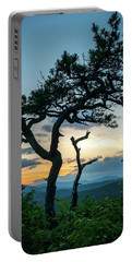 Blue Ridge Mountains Dr. Tree Portable Battery Charger