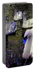 Blue Swan Portable Battery Charger
