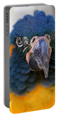 Blue-throated Macaw Close-up Portable Battery Charger
