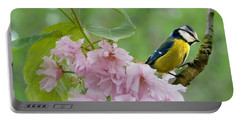 Blue Tit On Cherry Blossom Portable Battery Charger